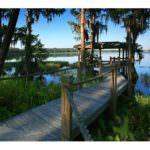 Lake Nona FL Real Estate